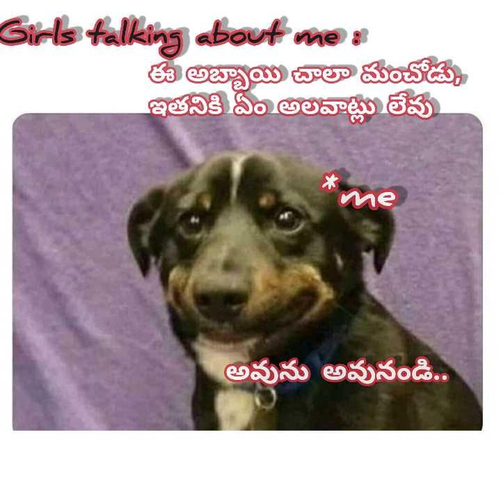 funny😋 - Girls talking about me : ఈ అబ్బాయి చాలా మంచోడు . ఇతనికి ఏం అలవాట్లు లేవు me అవును అవునండి . . - ShareChat