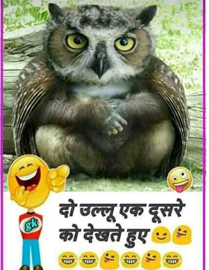 100 Best Images Videos 2020 Funny Jokes Whatsapp Group Facebook Group Telegram Group