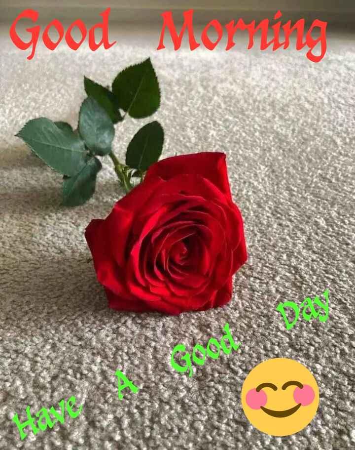 g0od m0rn!ng.. - good Morning - ShareChat