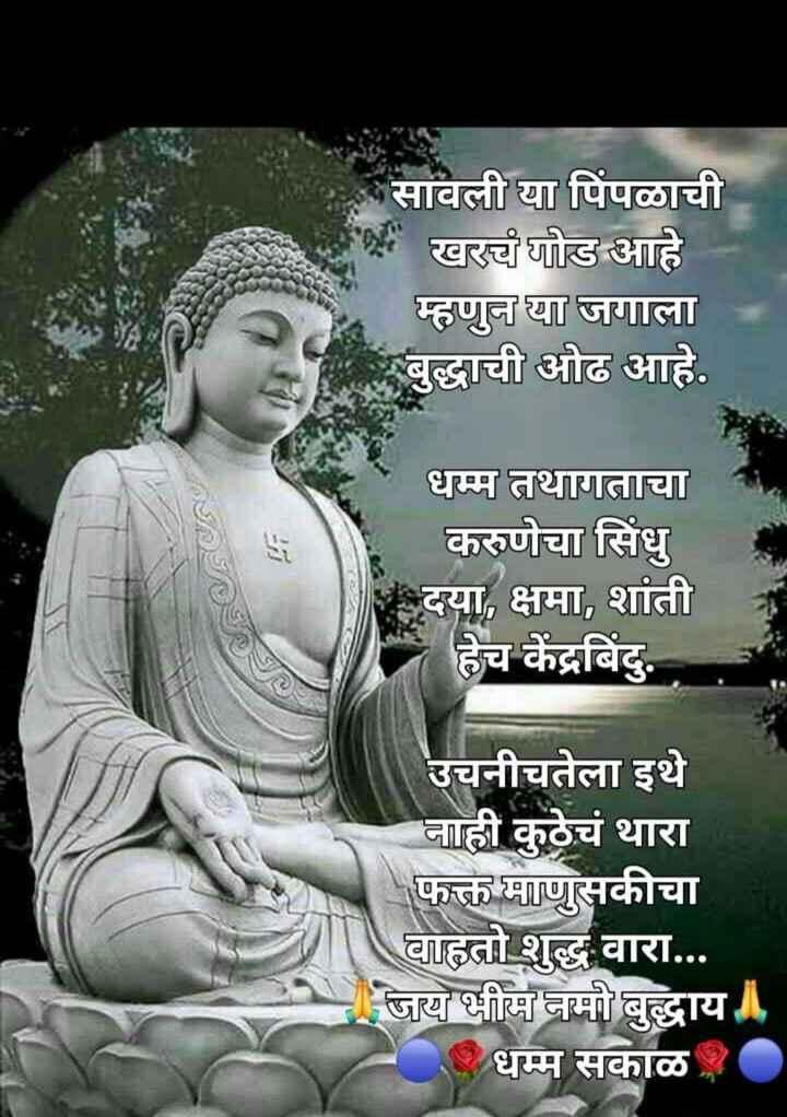 g - * सावली या पिंपळाची खरचं गोड आहे म्हणून या जगाला बुद्धाची ओढ आहे . धम्म तथागताचा करुणेचा सिंधु दया , क्षमा , शांती हेच केंद्रबिंदु . उचनीचतेला इथे नाही कुठेचं थारा फक्त माणुसकीचा वाहतो शुद्ध वारा . . . जय भीम नमो बुद्धाय । धम्म सकाळ . - ShareChat