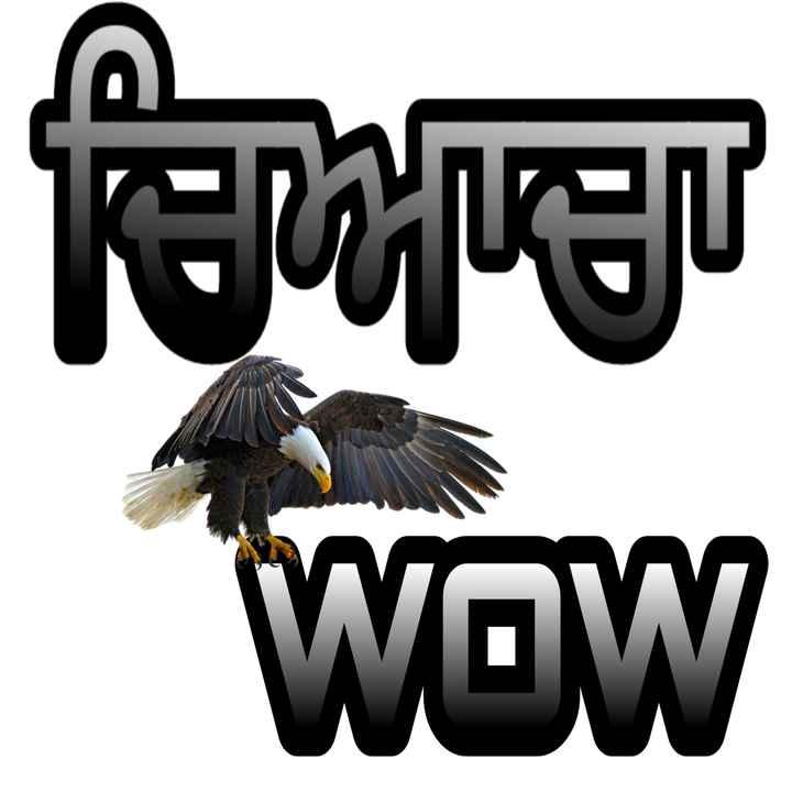 gaint pic - ਅਪਣਾ WOW - ShareChat