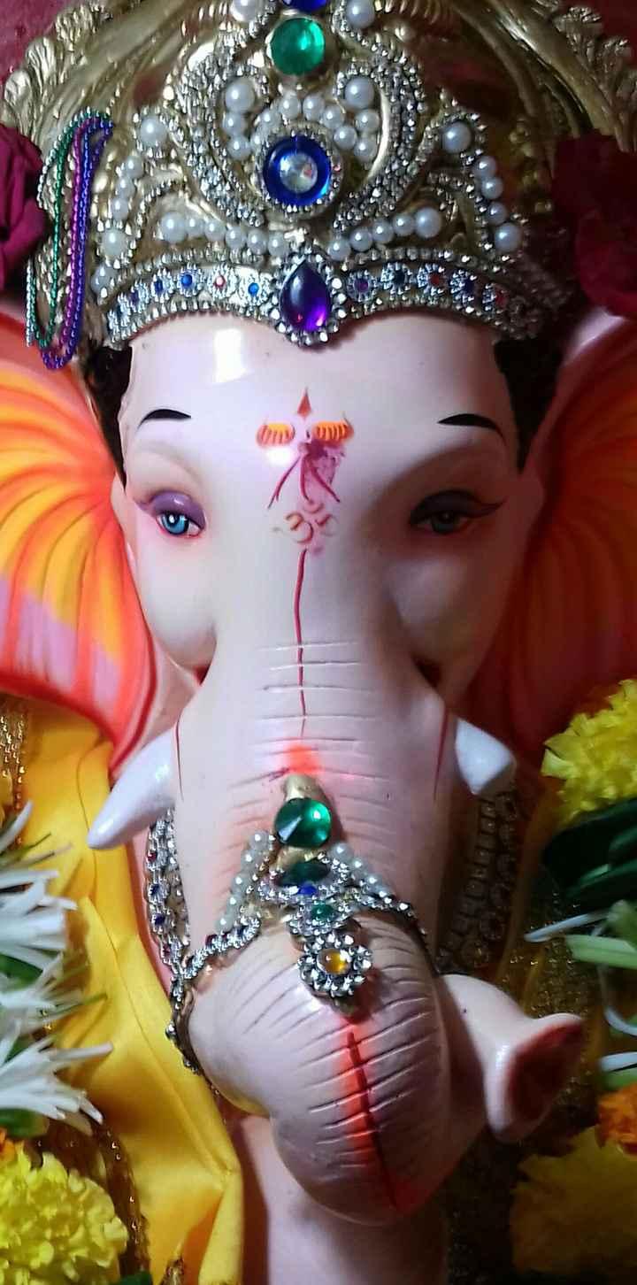 ganpati bappa morya - ShareChat