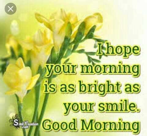 gd mng - Thope your morning is as bright as your smile . So Good Morning - ShareChat