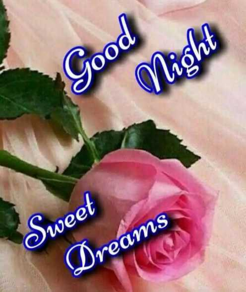 gn...💜💜💜 - Good Night Sweet Dreams - ShareChat