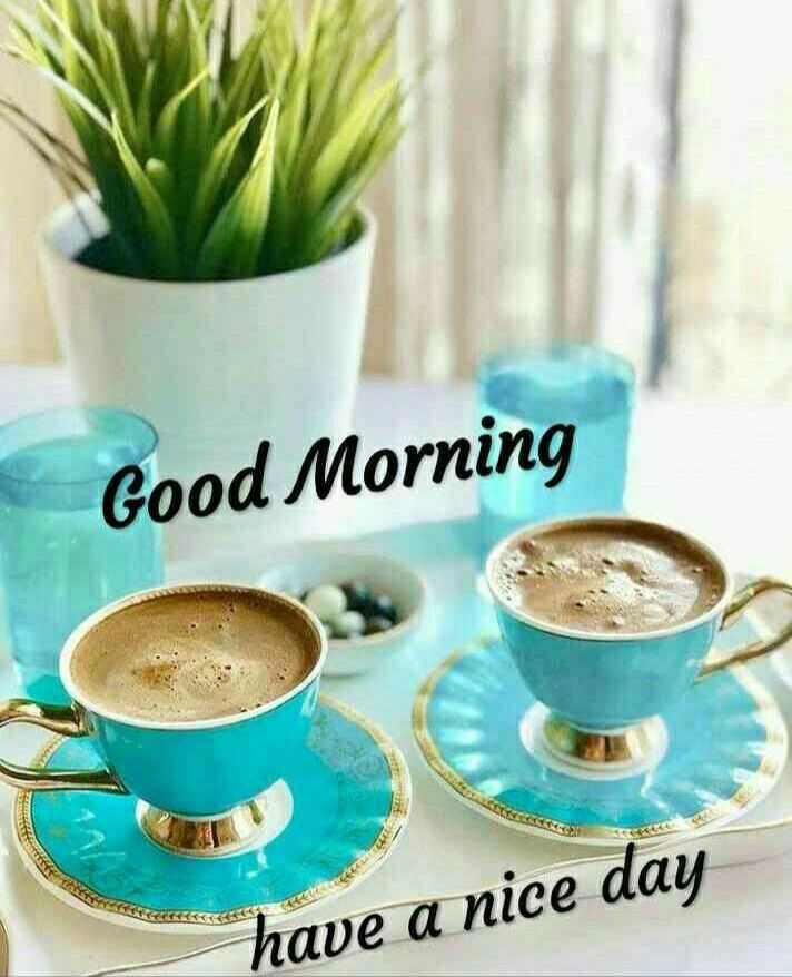 good ℳᝪℛℕⅈℕℊ - Good Morning have a nice day - ShareChat