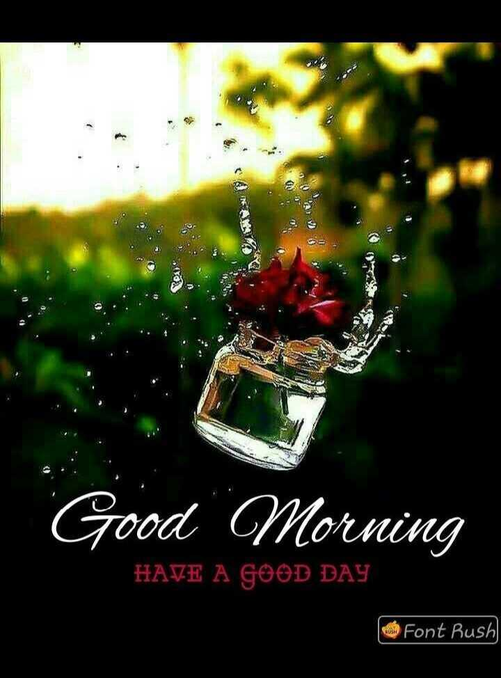 good ℳᝪℛℕⅈℕℊ - Good Morning HAVE A GOOD DAY Font Rush - ShareChat