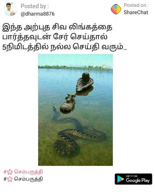 good - - Posted by : Posted on : இது @ dharma8876 ShareChat இந்த அற்புத சிவ லிங்கத்தை பார்த்தவுடன் சேர் செய்தால் 5நிமிடத்தில் நல்ல செய்தி வரும் . # : செம்பருத்தி # செம்பருத்தி GET IT ON Google Play - ShareChat