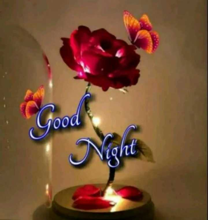 good 🌃 - Good Night - ShareChat