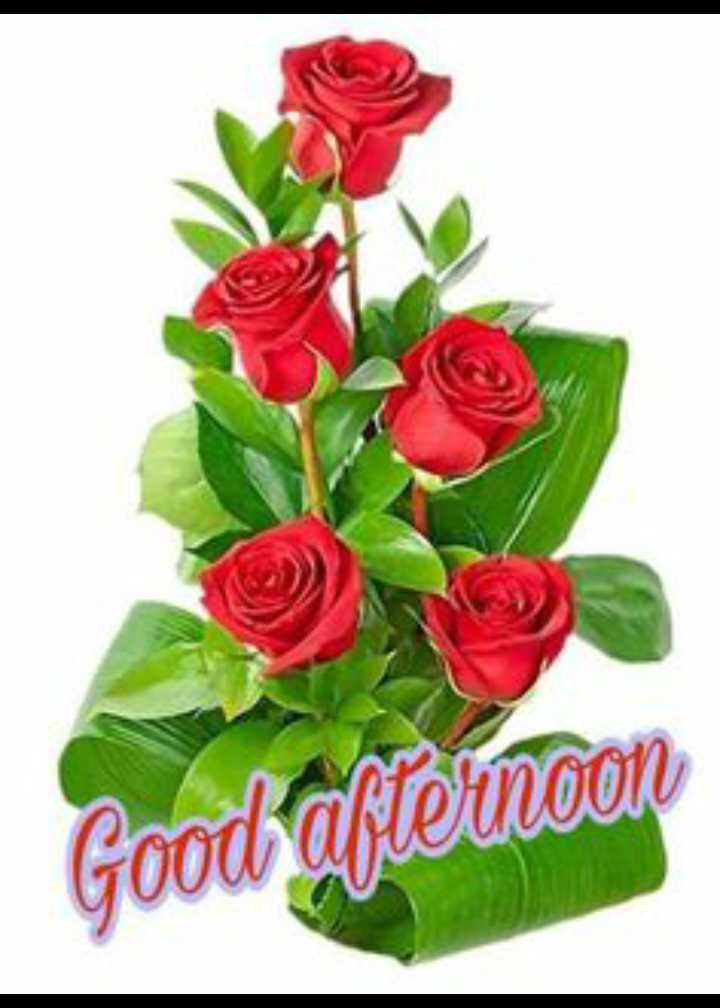 good a afternoon g - Good afternoon - ShareChat