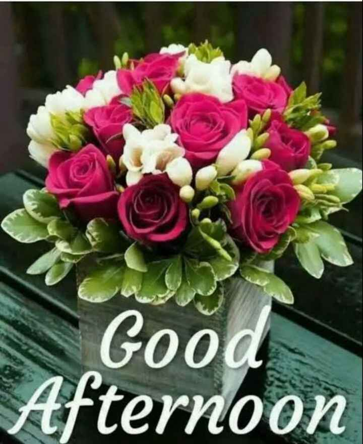 good afternoon ❤ - Good Afternoon - ShareChat