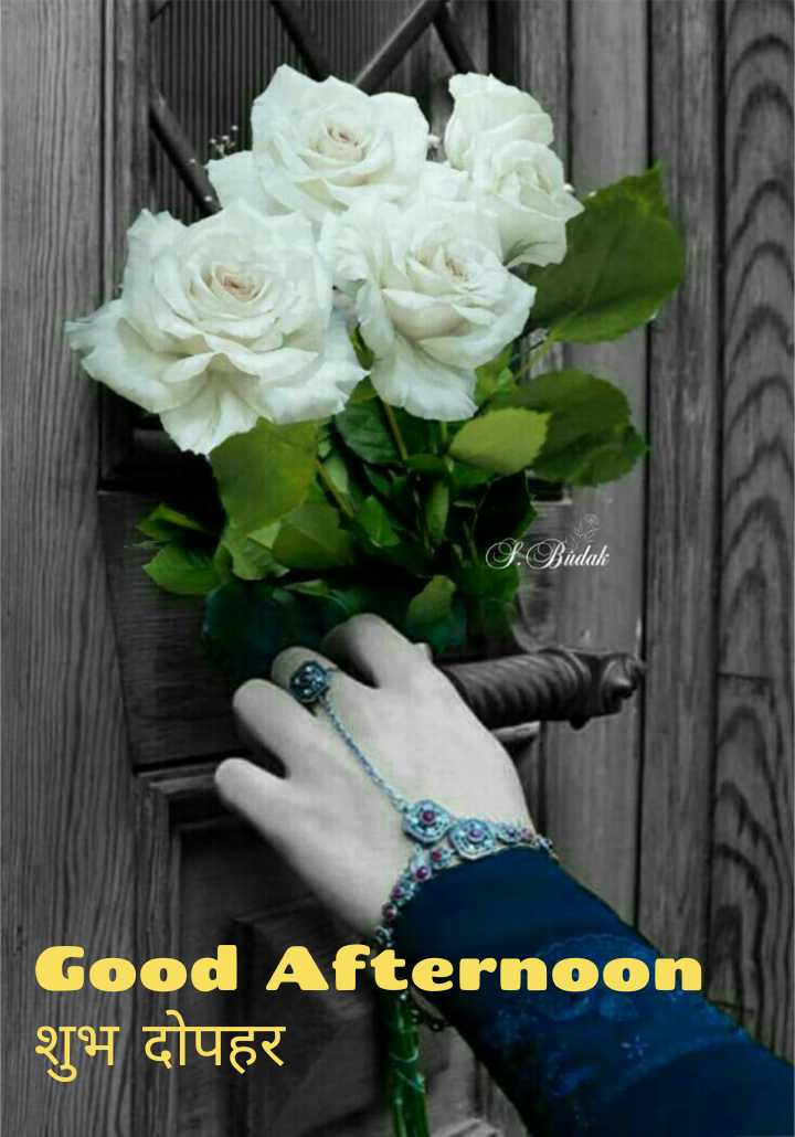 good afternoon.... - S . Budak Good Afternoon शुभ दोपहर - ShareChat