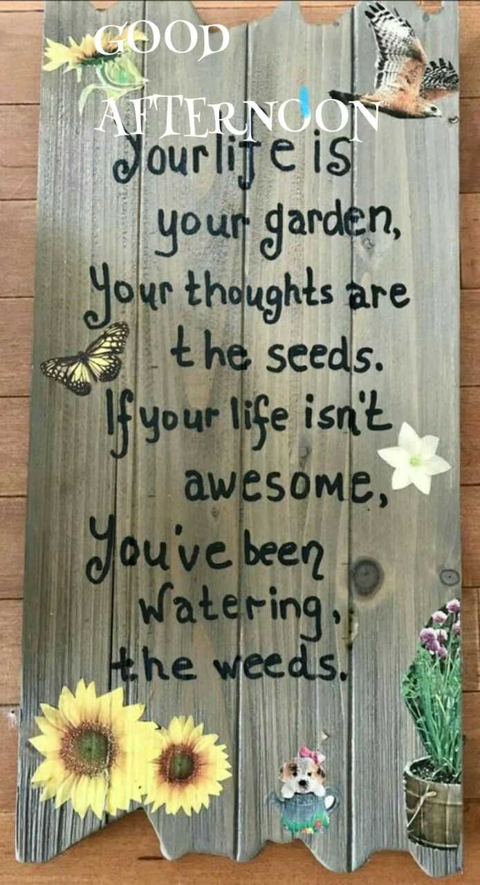 good afternoon.... - UGOOD AFTERNOON Jourlife is your garden , your thoughts are on the seeds . If your life isn ' t awesome , you ' ve been Watering , the weeds . - ShareChat