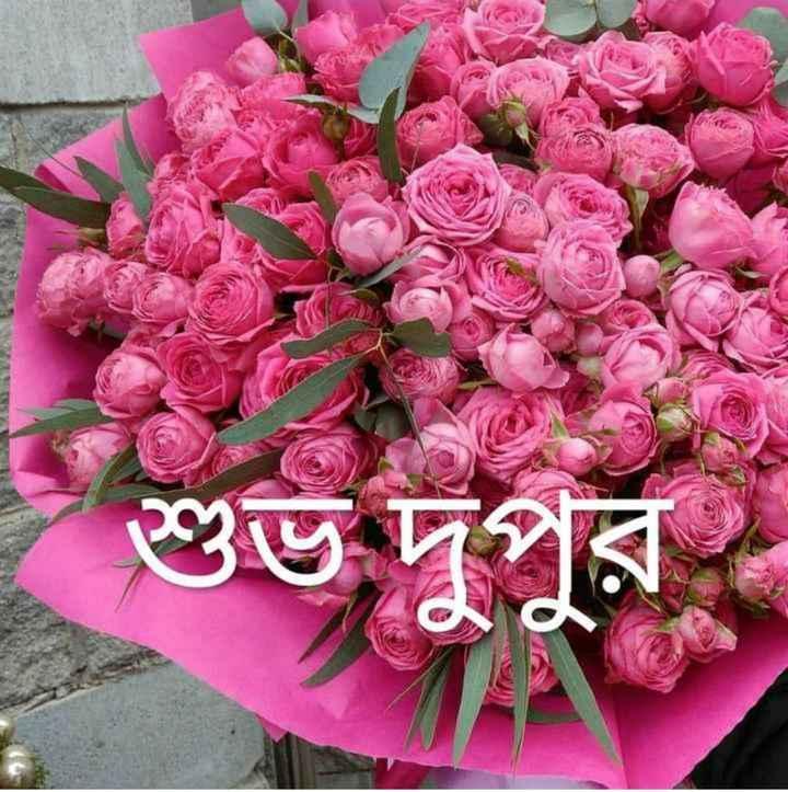 good afternoon friends - শুভ দপর - ShareChat