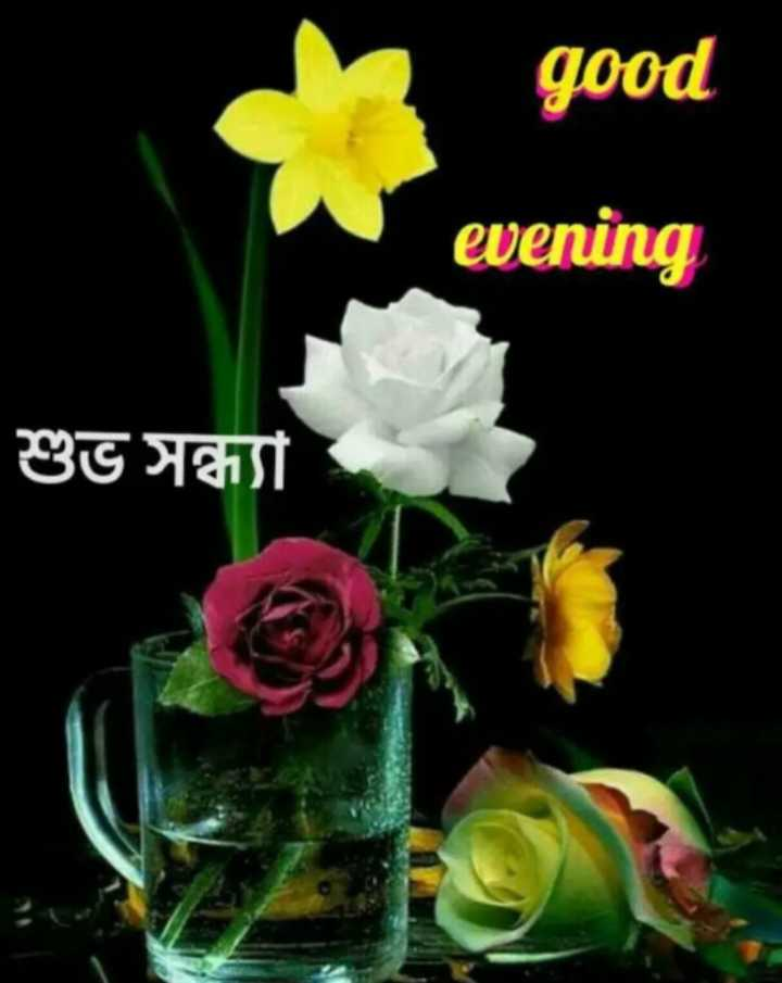 good evening - good evening শুভ সন্ধ্যা - ShareChat