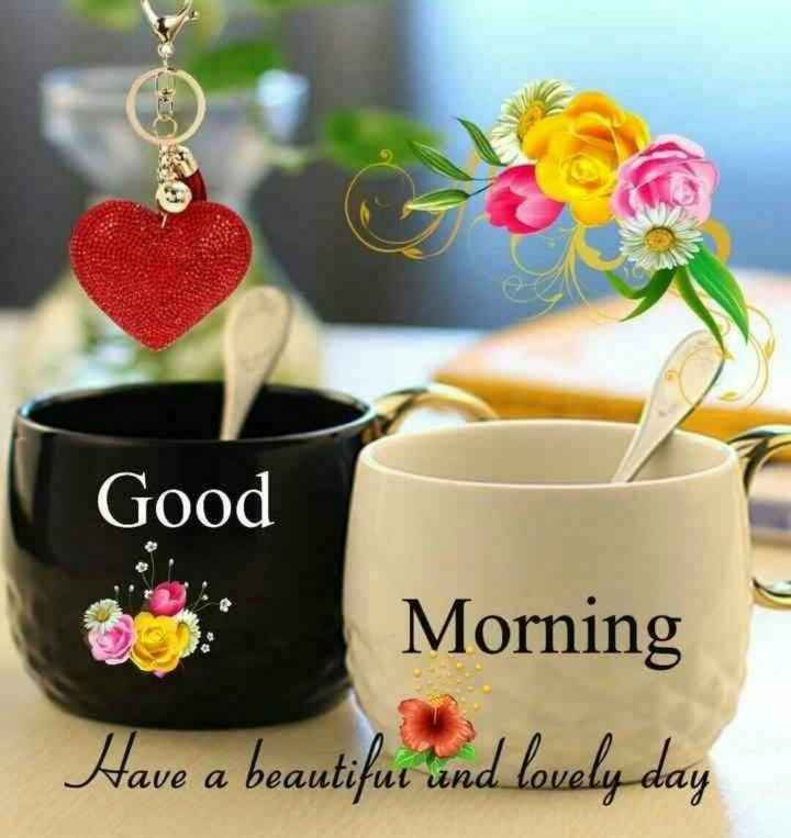 ☕good evening ☕ - Good Morning Have a beautifue ' and lovely day - ShareChat