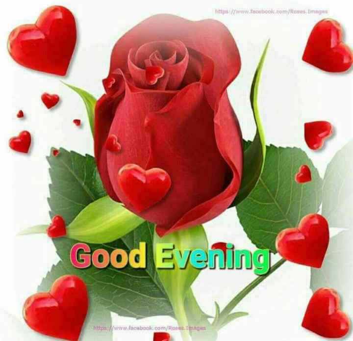 💕💕💕good evening ☕☕💕💕💕 - https : / / www . facebook . com / Roses Images Good Evening Kurs / / www . facebook . com / Roses Images - ShareChat