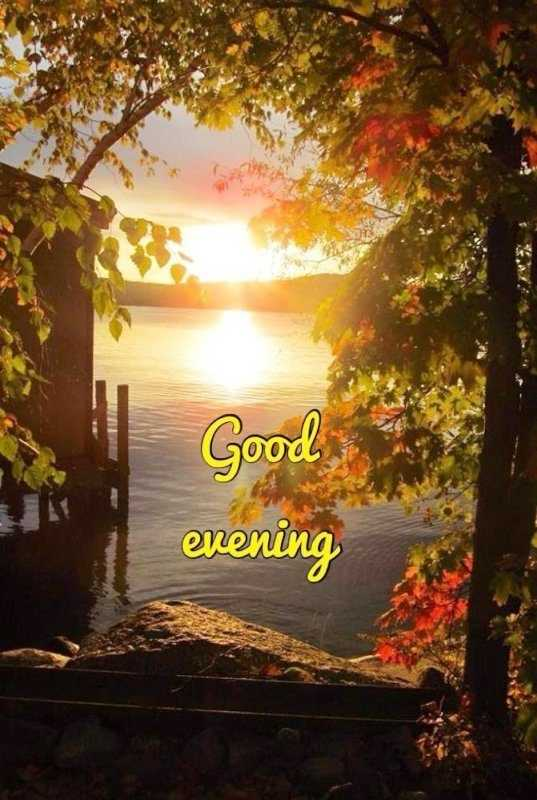 good evening 🌃 - Good enening - ShareChat