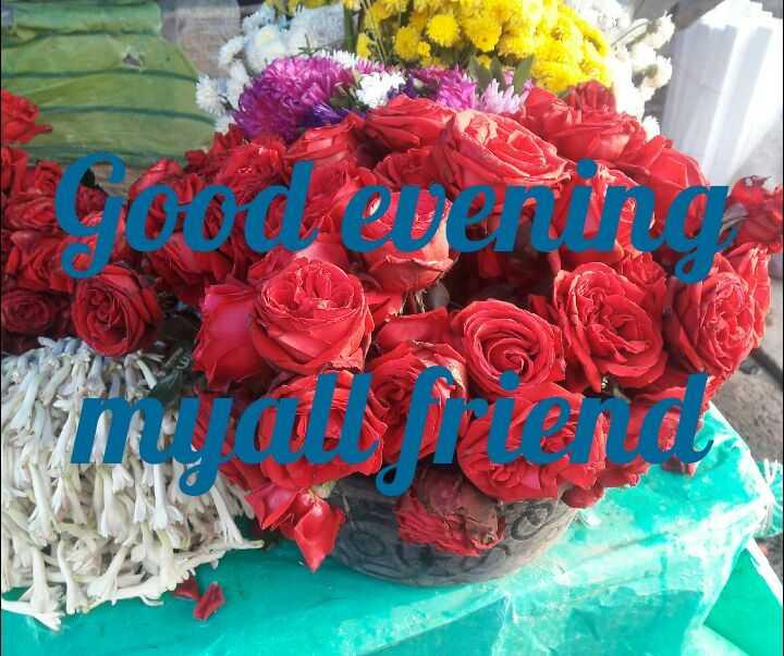 good evening - ShareChat