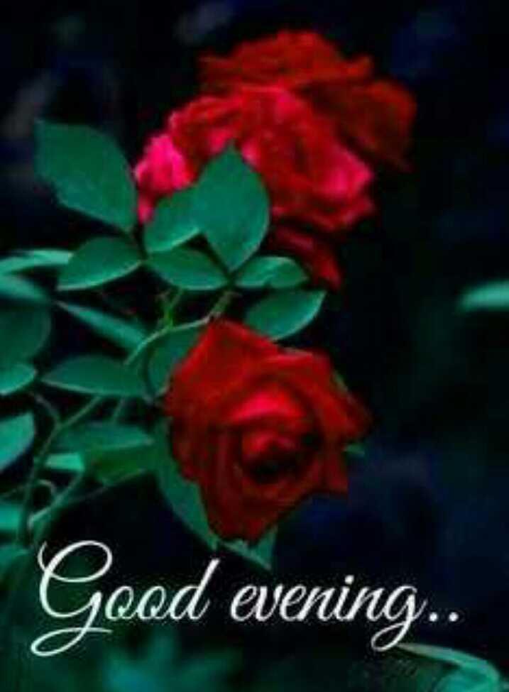 good evening - Good evening . . - ShareChat
