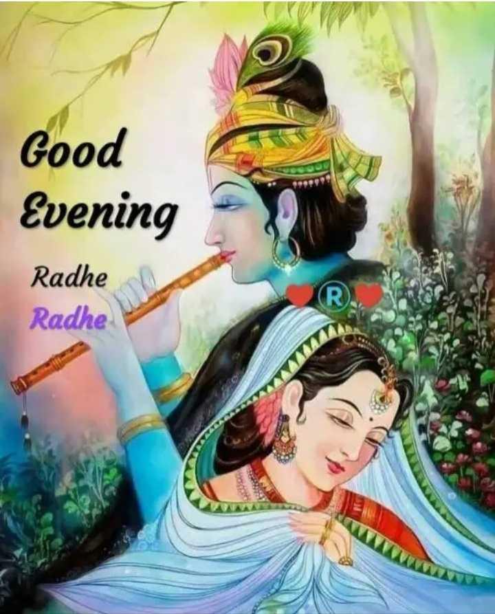 good evening - Good Evening Radhe Radhe - ShareChat