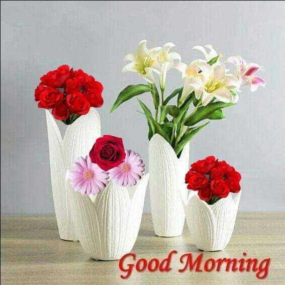 ☕good evening ☕ - Good Morning - ShareChat