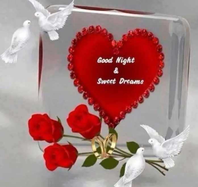 ☕good evening ☕ - Good Night Sweet Dreams - ShareChat
