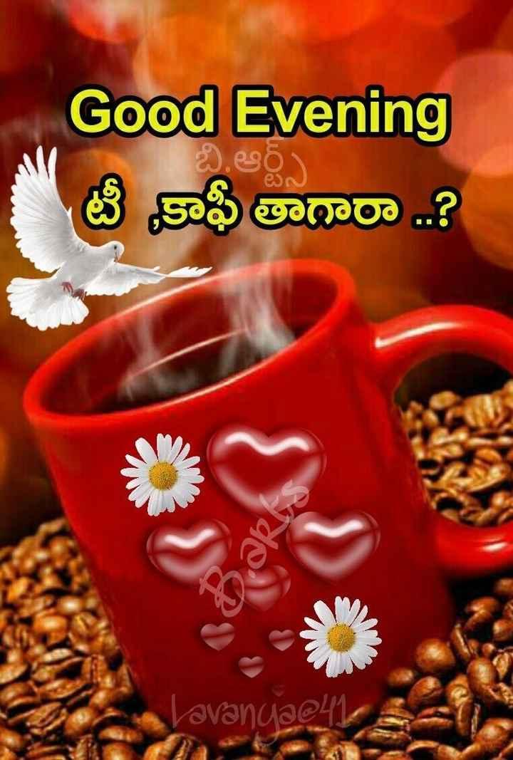 goodevening - Good Evening టీ కాఫీ తారా . . ? Javandae47 - ShareChat