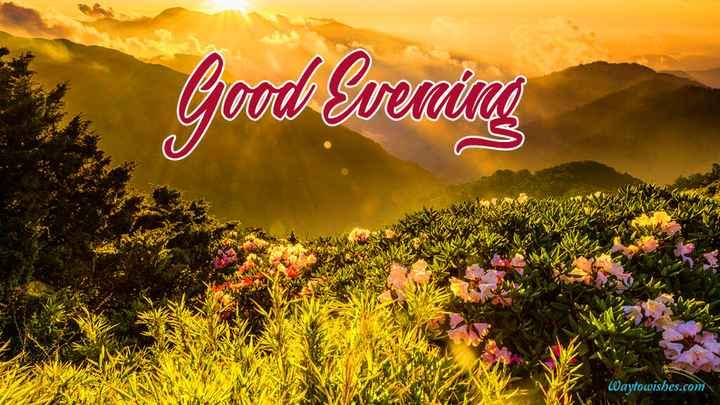 good evening ☕ - Good Evening Waytowishes . com - ShareChat