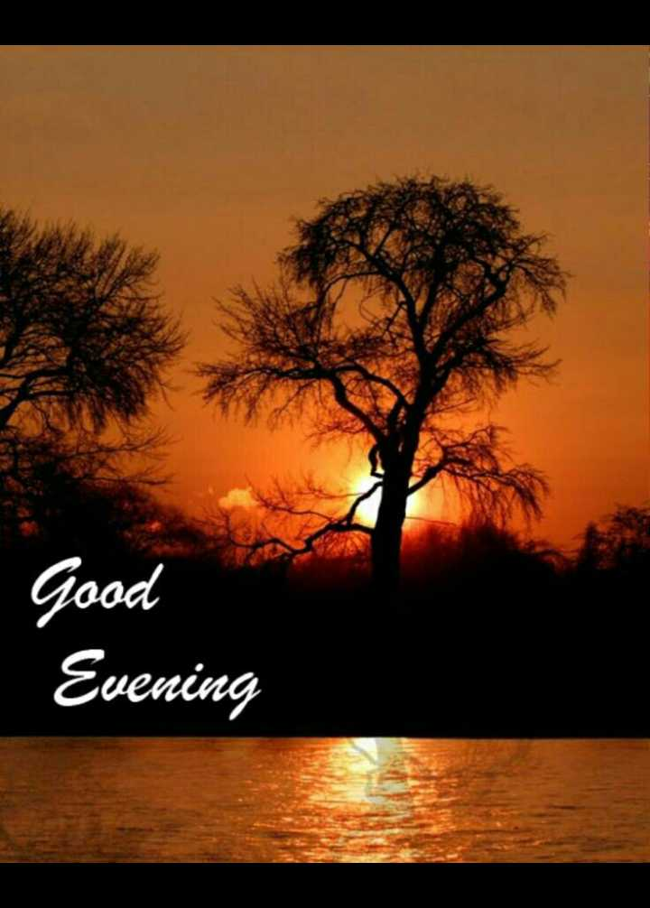 ☕good evening ☕ - Good Evening - ShareChat