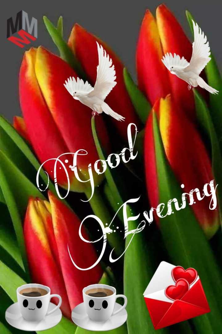 good evening friends - Optiooti Kvenmg - ShareChat