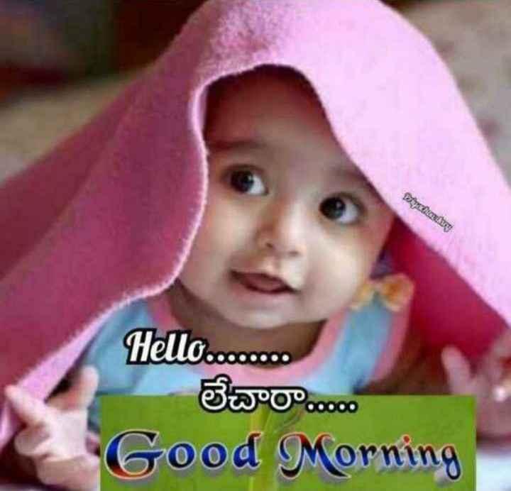 good moaring - Kyratnam Hello . . . . . . . . లేచారా . . . . . Good Morning - ShareChat
