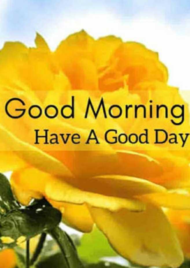 good mornig - Good Morning Have A Good Day - ShareChat