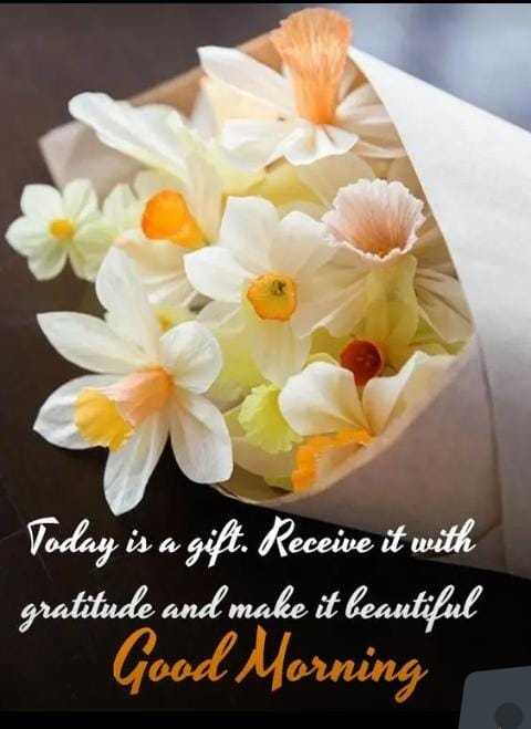 good morning#सुप्रभात - Today is a gift . Receive it with gratitude and make it beautiful Good Morning - ShareChat