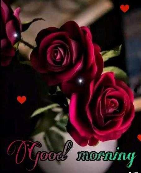 good morning#सुप्रभात - O goed moming - ShareChat