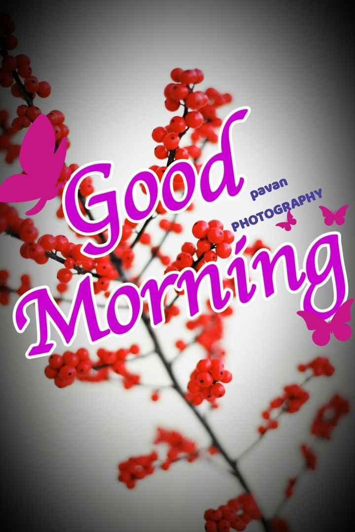 good morning (ಶುಭದಿನ) - pavan PHOTOGRAPHY ning - ShareChat