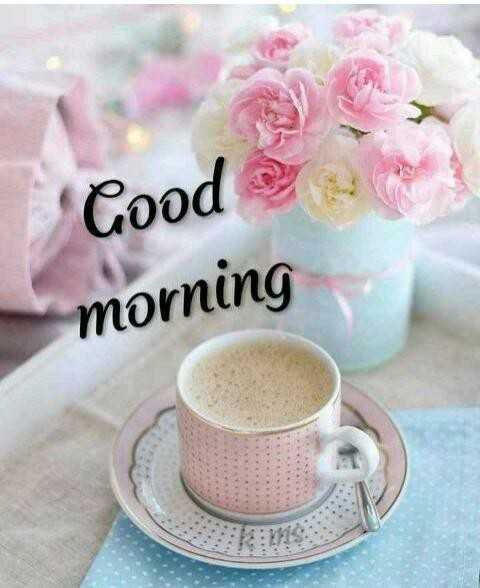 good morning ......... - Cood morning - ShareChat