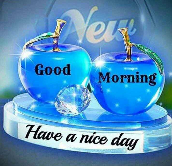 good morning ......... - er Good Morning Good Morning Have a nice day - ShareChat