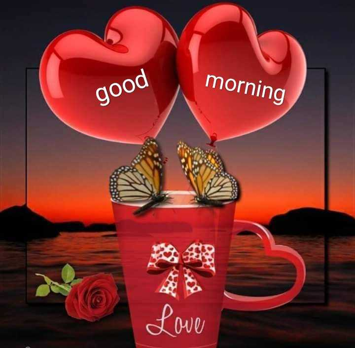 good morning .... - morning good Love - ShareChat