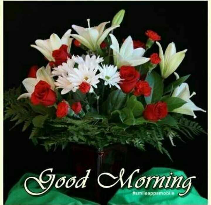 good morning.... - Good Morning # senileappamobile - ShareChat