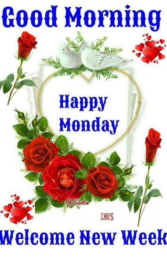 good morning .... - Good Morning 00000 Happy Monday OOOOOOOOOOOO Joooooooo 9 . Sants C @ J $ Welcome New Week - ShareChat