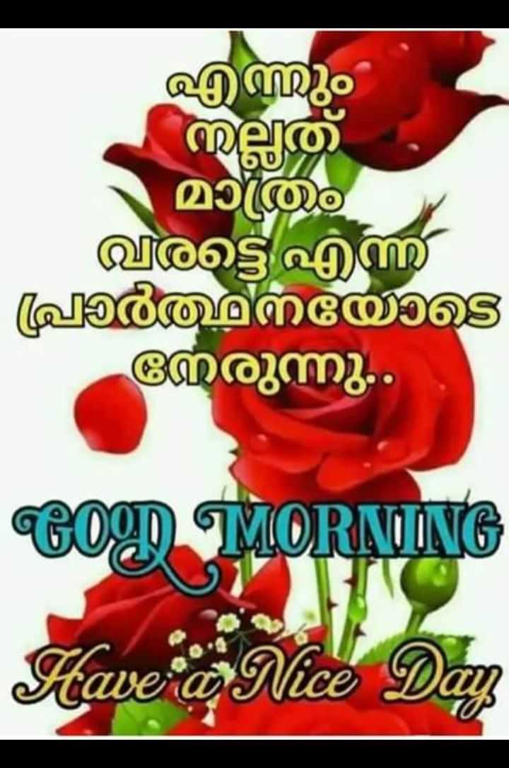 🙋good morning...🌹🌹🌹 - എത്തും നല്ലത് മാത്രം വരട്ടെ എന്ന് - പ്രാർത്ഥനയോടെ രുന്നു . . COM TORNOONG Have a Nice Day - ShareChat