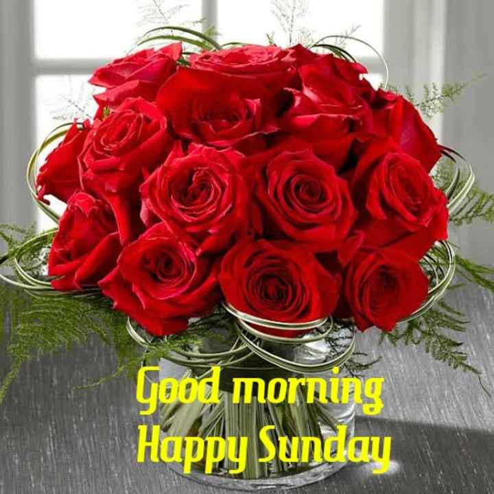 good morning☕🌹 - Good morning Happy Sunday - ShareChat