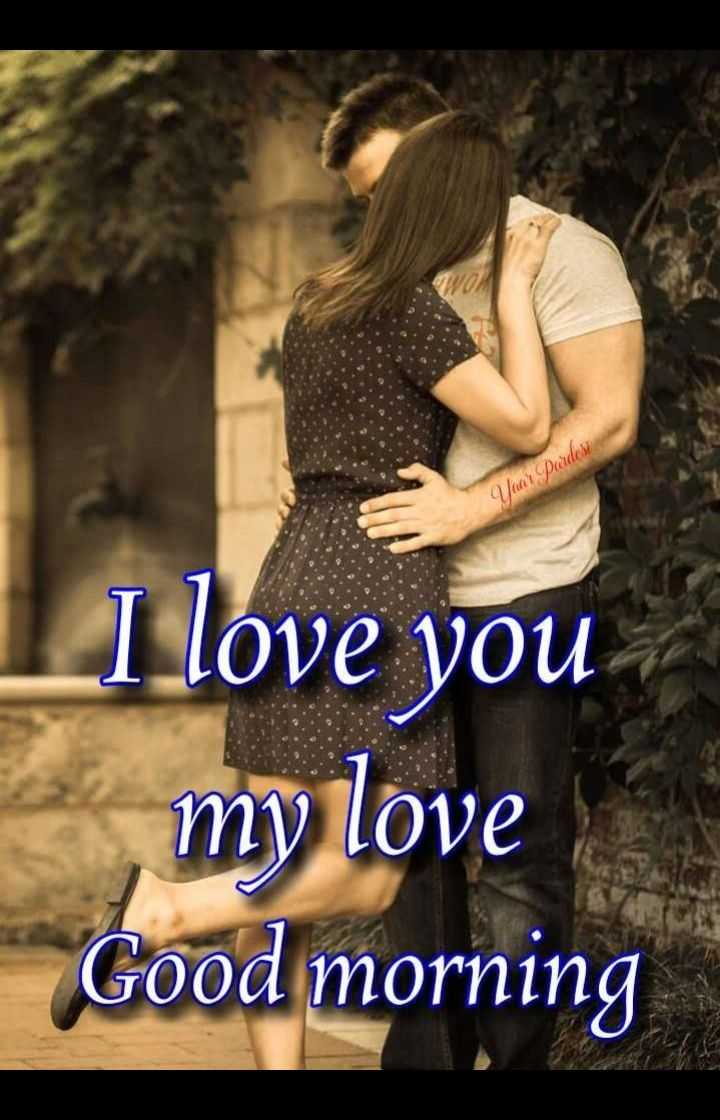 🌹good morning 🌹 - pardca on I love you my love Good morning - ShareChat