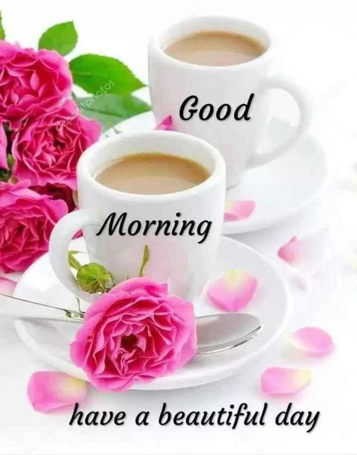 good morning - torotos Good Morning have a beautiful day - ShareChat