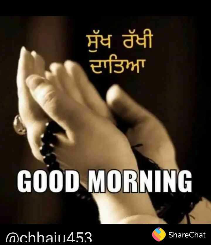 good morning 🙏🙏 - ਸੁੱਖ ਰੱਖੀ ਦਾਤਿਆ GOOD MORNING @ chhaiu453 ShareChat - ShareChat