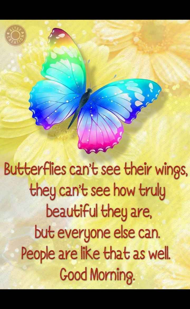 😊💐good morning 😊💝 - Butterflies can ' t see their wings , they can ' t see how truly beautiful they are , but everyone else can . People are like that as well . Good Morning . - ShareChat