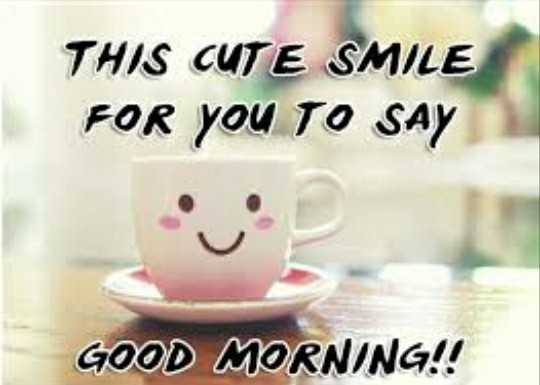 🌹🌷good morning🌷🌹 - THIS CUTE SMILE FOR YOU TO SAY GOOD MORNING ! ! - ShareChat