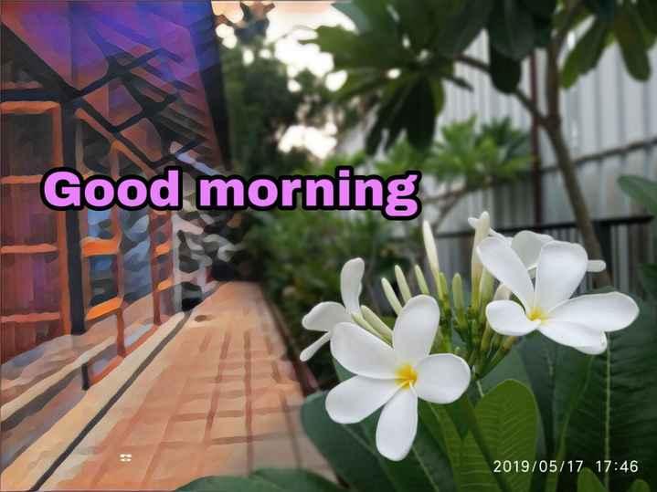 🌄good morning - Good morning 2019 / 05 / 17 17 : 46 - ShareChat