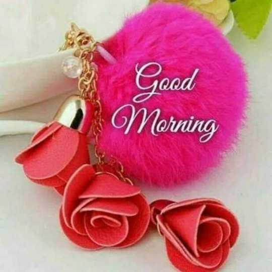 good morning 🌷 - Good Morning - ShareChat