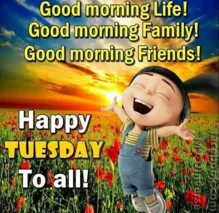 good morning 😘😘😘😘 - Good morning Life ! Good morning Family ! Good morning Friends ! Happy TUESDAY To all ! Cioccom - ShareChat